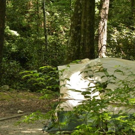 Campsite 8 is just a short walk from the parking lot.