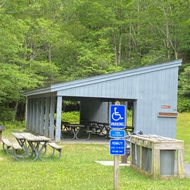 Plenty of shelters in the picnic area