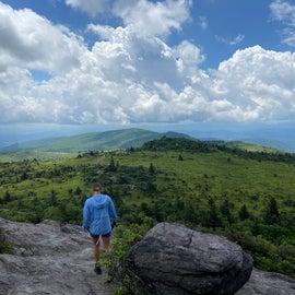 Wilburn Ridge Trail