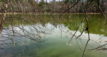 MST Section 23 Falls Lake
