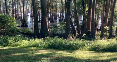 Horseshoe Lake State Conservation Area