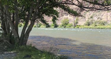 Beavertail Recreation Site