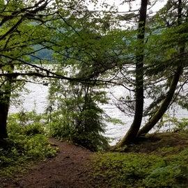 Site #17 - Trail to lake