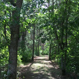 Hiking trail to park office
