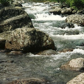 Many waterways are accessible through Cooper Creek South
