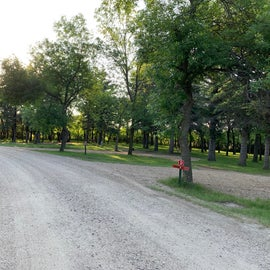 Various campsites with lots of shade trees