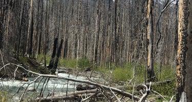 Spruce Grove Campground