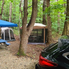 Our camp set up : )
