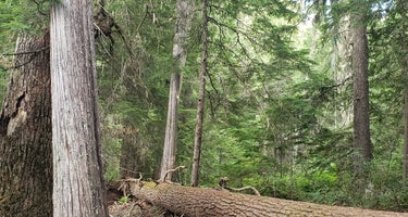 South Skookum Lake Campground