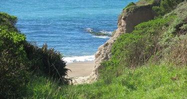 Coast Camp - Point Reyes NS