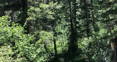 Winsor Ridge Trailhead