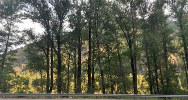 Berne Roadside Park