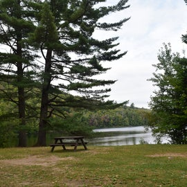 This is a view of the lake from the picnic area.