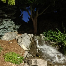 Cute water feature