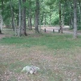 Campsite looking back toward loop road