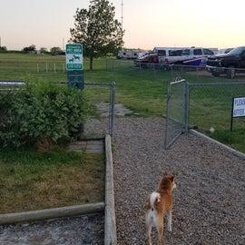 Fenced dog park area.  Doggy bag dispenser, trash can