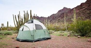Alamo Canyon Primitive Campground