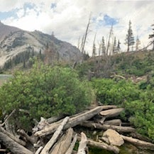 'Our Lake' - approximately 1.5hr hike from the trailhead
