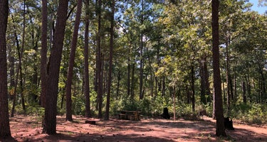 Sabine National Forest Indian Mounds Recreation Area