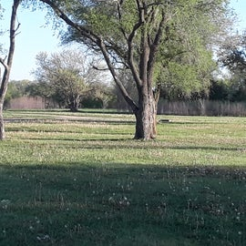 There are several areas of open field with campsites...all in view of the lake