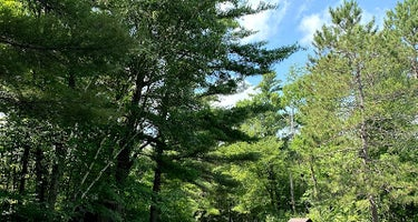 Walter E Stark Horse Campground - Pillsbury State Forest