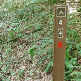 Trail signs are clear but not always their meanings. Do download maps before hand.