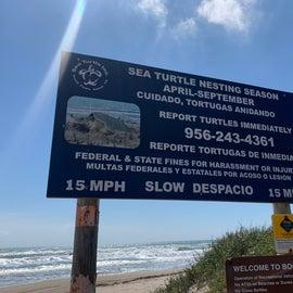 Turtle Conservation Signage
