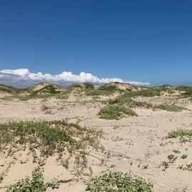 Dune Areas