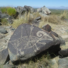 Most widely recognized Three Rivers Petroglyph Site glyph, bighorn sheep with 3 arrows, on main trail, moderate 1 mile hike round trip.