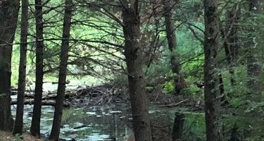 Woods and Water RV Resort