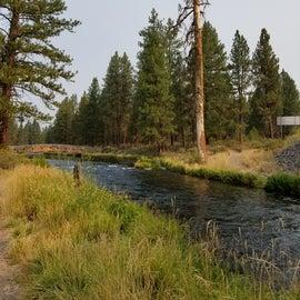 Walking along Spring Creek