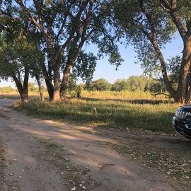 Dirt road through the camp spots