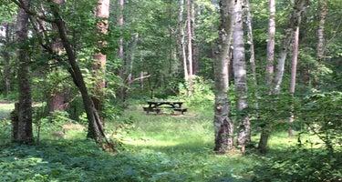 Tamarack Point Campground
