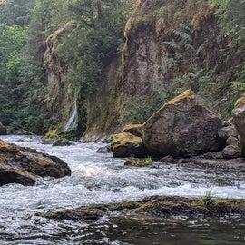 Idyllic early morning creek views
