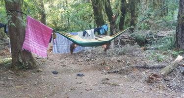 Salmon Creek Falls Campground