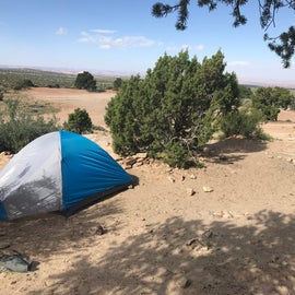 View of site 3 from the back corner.  Picnic table is behind the tent and the open spot in the top left corner is another campsite.