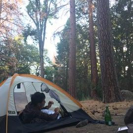 Campsite 5 at alder creek