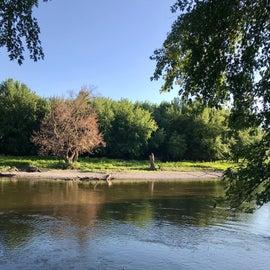 Sioux river bank has sandy shoreline in spots