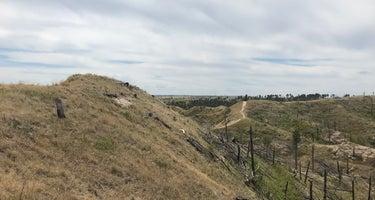 Nebraska National Forest at Chadron