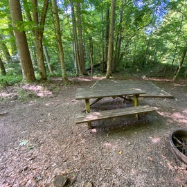 Picnic table and metal fire ring with grill great