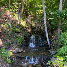 One of several Trailside cascades