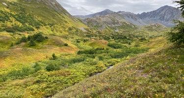 Hope Alaska Backcountry Sites