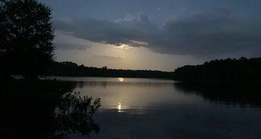 Hartwell Lake - COE/Springfield