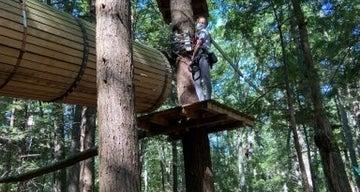 Wild Acres RV Resort & Campground