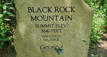 Fern Cove - Black Rock Mountain State Park