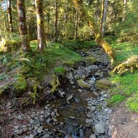 Babbling brook, Nature Trail, Merrill Lake