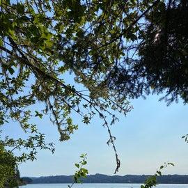 Siltcoos Lake Trail