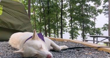 Ouachita Lake - COE/Joplin Campground
