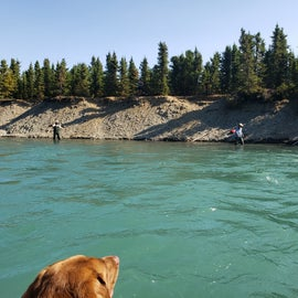 Kenai River is 100 ft. across the Sterling Hwy. The Russian River comes in about 2 miles downstream. Famous for salmon fishing. Reservation@GwinsLodge.com