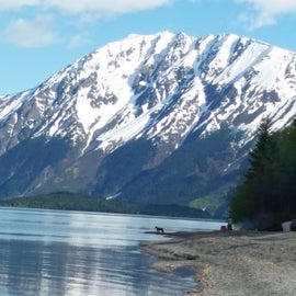 Kenai Lake is 4 miles up river